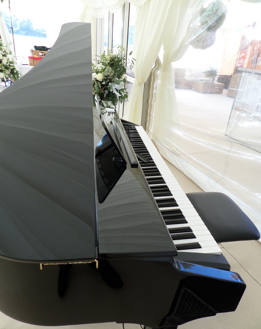 Baby Grand Piano Shell